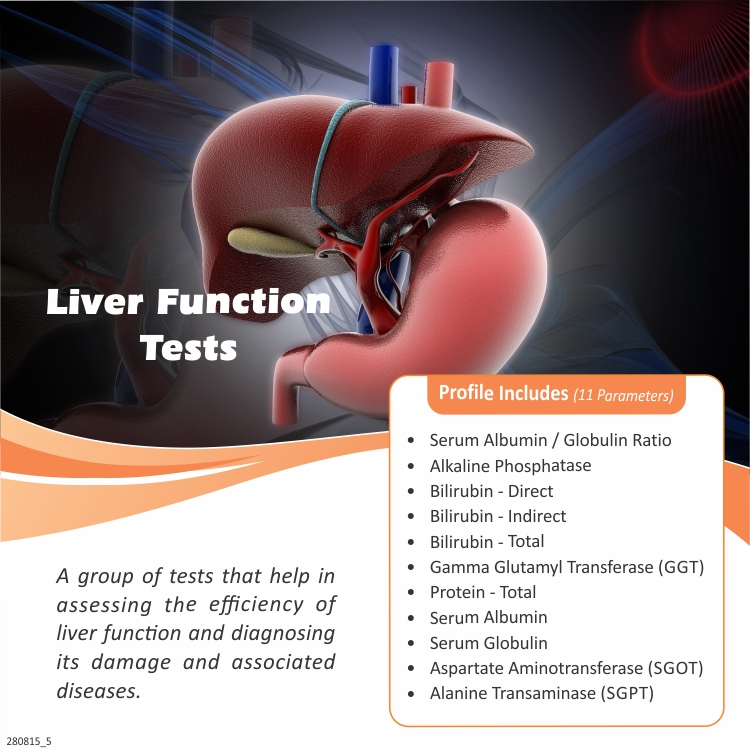 LIVER FUNCTION TESTS in Mumbai @₹550 Only | 11 Tests | Thyrocare