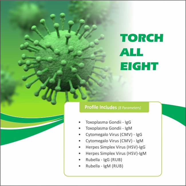 TORCH ALL EIGHT in Chennai @₹1250 Only | 8 Tests | Thyrocare